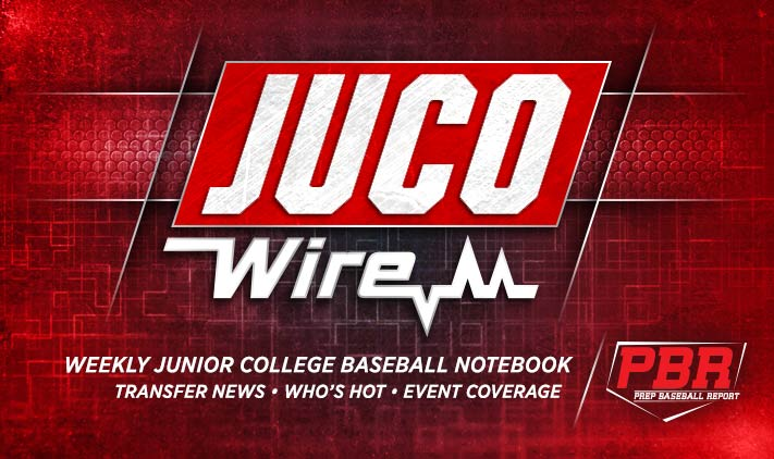 Image result for pbr juco